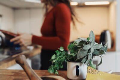 Kruiden over 5 slimme tips voor leftover kruiden